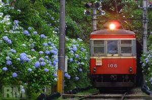 有名観光スポット★箱根湯本でランチをするならここがおすすめ5選のサムネイル画像