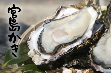 海のミネラルがたっぷり入ったおいしい宮島の牡蠣情報のまとめのサムネイル画像