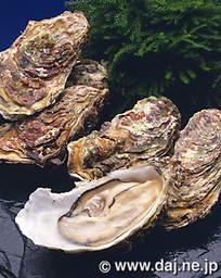 濃厚!絶品!今すぐ食べたい日生の牡蠣。カキオコも魅力的!のサムネイル画像