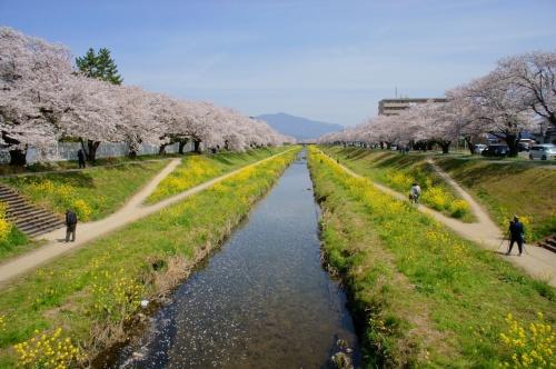 豊川で味わいたいっ♡豊川の厳選おすすめランチスポット5選!のサムネイル画像