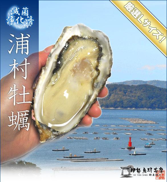 三重県鳥羽市の浦村牡蠣、美味しい牡蠣を食べられるお店のまとめ。のサムネイル画像