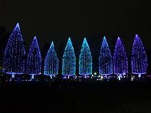 「光の祭典」の街、竹ノ塚の