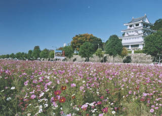 緑の公園が多い尾張旭市。今日のランチは美味しいこの店で楽しもう♪のサムネイル画像