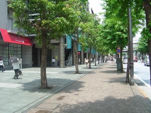 横浜の高級住宅地「青葉台」で愛される絶品ランチを紹介します!のサムネイル画像