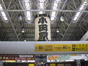 週末は小田原で海鮮を食べよう!地元で人気のおいしいお店5選のサムネイル画像