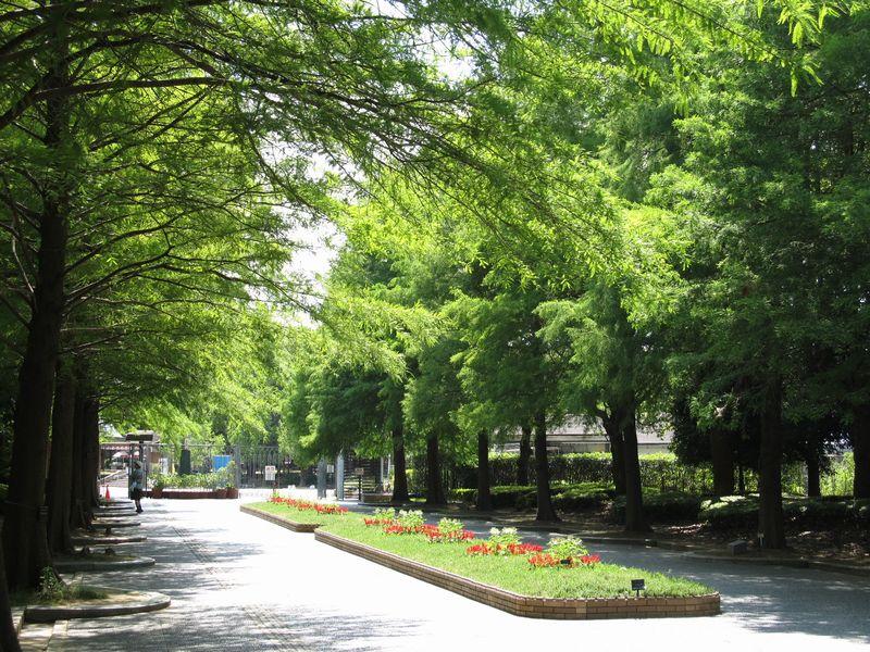 [大阪・住吉]長居公園周辺でおすすめランチスポット!厳選5選!のサムネイル画像